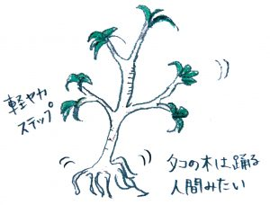 13_10-alami-wayag
