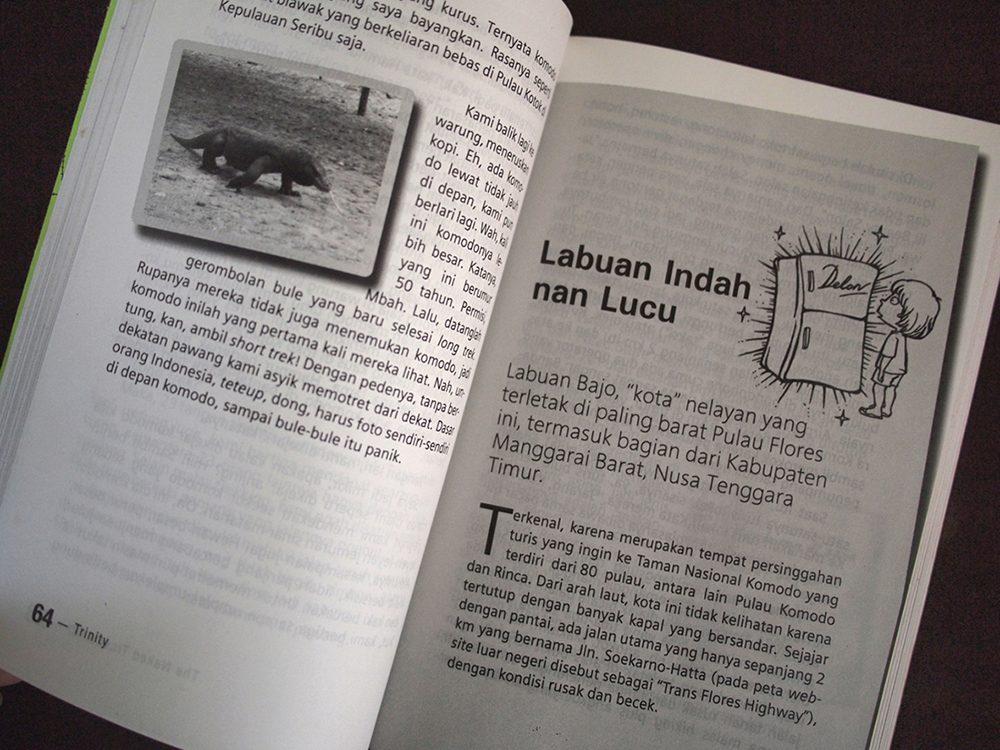 book_nao_P6295605