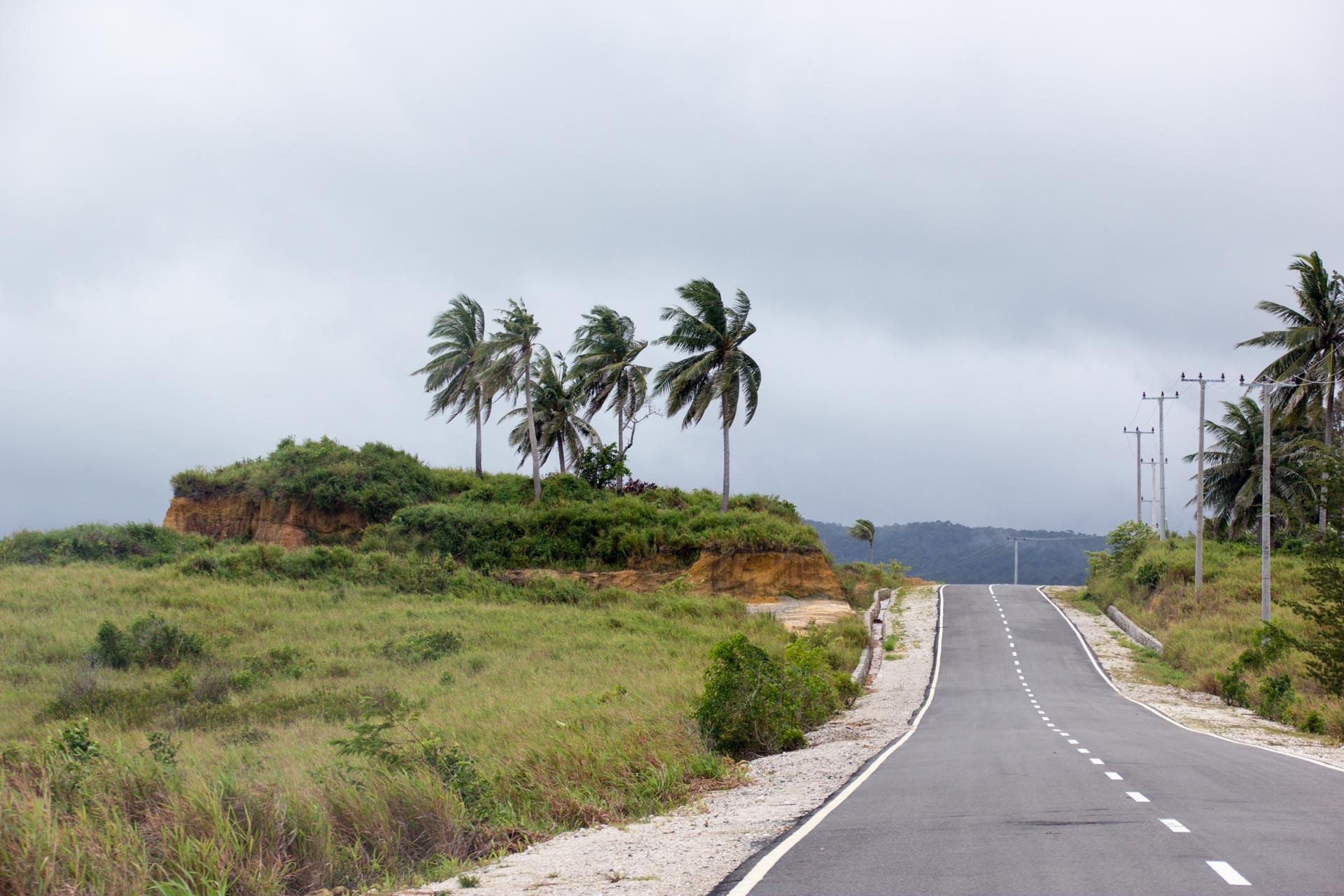 (リアウ諸島)北へ向かう道
