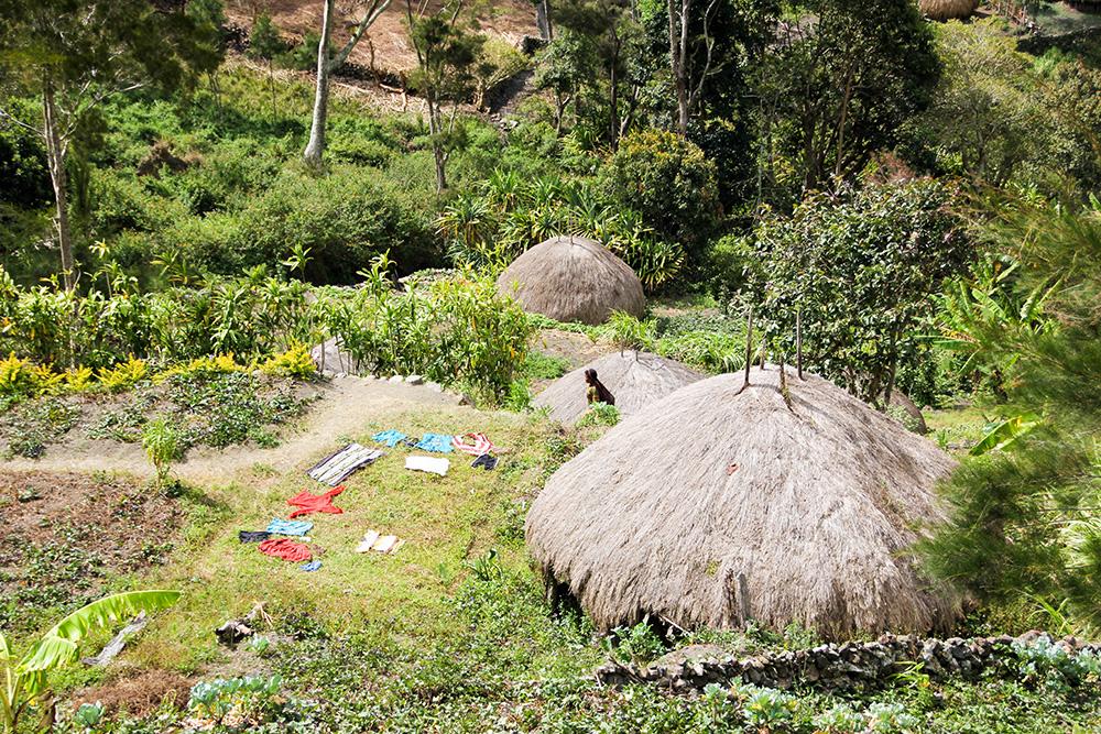 nabeyama_papua_02jalan_houses